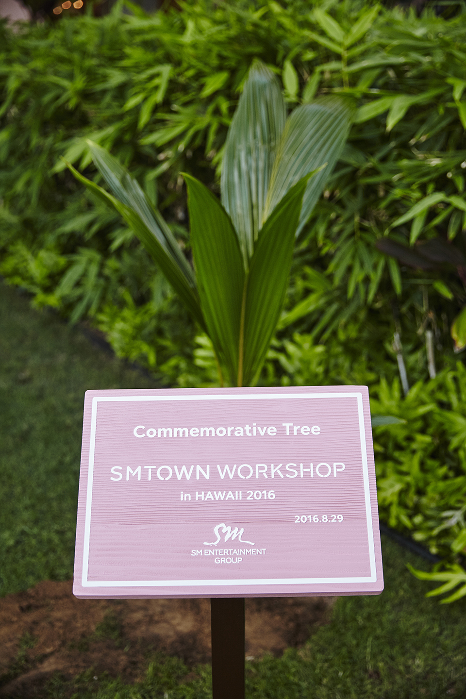 smtown-workshop-hawaii-3